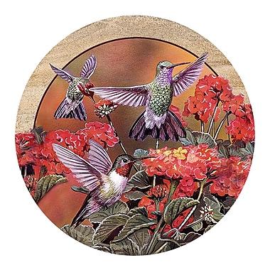Thirstystone Hummingbirds & Flowers Coaster (Set of 4)