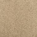 Milliken Legato Touch 19.7'' x 19.7'' Carpet Tile in Seadunes