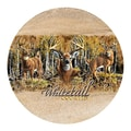 Thirstystone Whitetail Country Coaster (Set of 4)