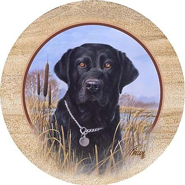 Thirstystone Killen's Black Lab Coaster (Set of 4)