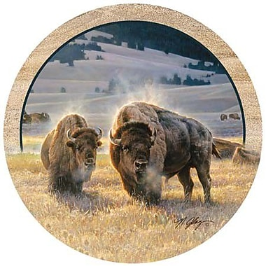 Thirstystone Hidden Valley Buffalo Coaster (Set of 4)