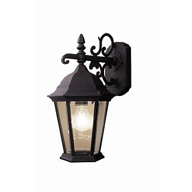 Woodbridge Basic 1-Light Outdoor Wall Lantern; Powder Coat Rust