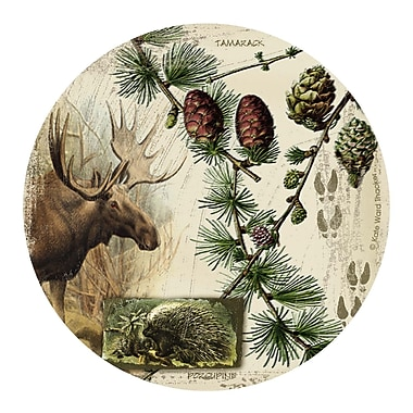 Thirstystone Bull Moose Collage Coaster (Set of 4)