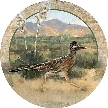 Thirstystone Roadrunner Coaster (Set of 4)