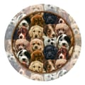 Thirstystone Puppies Occasions Coaster (Set of 4)