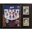 C & I Collectibles MLB 2013 Team Plaque; New York Mets