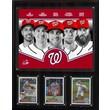C & I Collectibles MLB 2013 Team Plaque; Washington Nationals