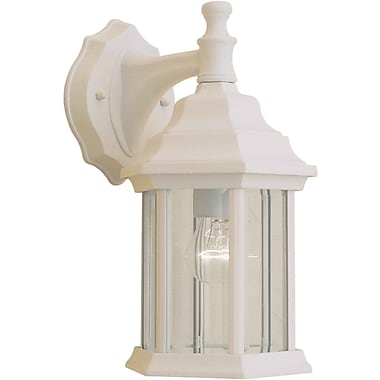 Forte Lighting 1-Light Outdoor Wall Lantern; Matte White