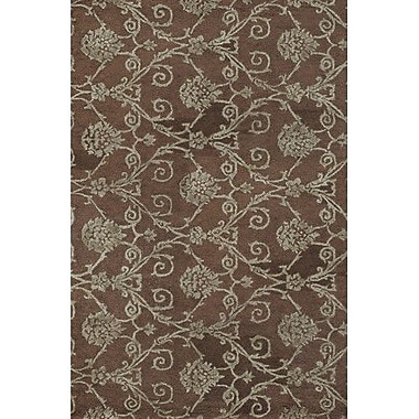 Chandra Casta Brown / Grey Area Rug; 5' x 7'6''