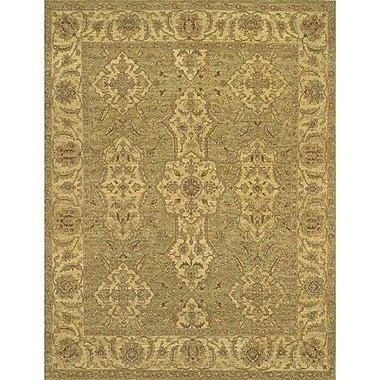 Chandra Kamala Area Rug; 6' x 9'
