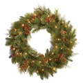 National Tree Co. Pre-Lit 30'' Noble Mixed Wreath