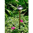 Dabmar Lighting 1 Light Landscape Lighting; Antique Bronze