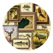 Thirstystone Wildlife Occasions Coaster (Set of 4)