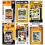 C & I Collectibles MLB Different Licensed Team