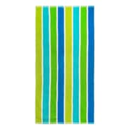 Textiles Plus Inc. Striped Terry Beach Towel; Green
