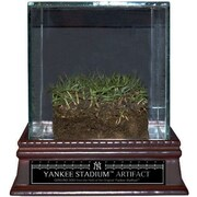 Steiner Sports Original Yankee Stadium Freeze-Dried Grass with Glass Display Case