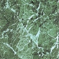 Home Dynamix 12'' x 12'' Vinyl Tile in Green Marble