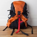 Backside Backsider Backpack; Orange