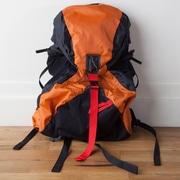 Backside Backsider Backpack; Orange