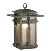 Wildon Home   Carrington 1 Light Hanging Lantern; Black
