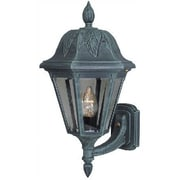 Special Lite Products Floral Outdoor Wall Lantern; Verde Green