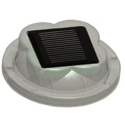 Taylor Made Products Solar LED Dock Light