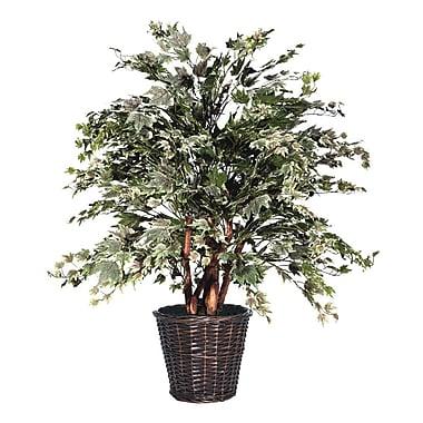 Vickerman Blue Maple Tree in Basket