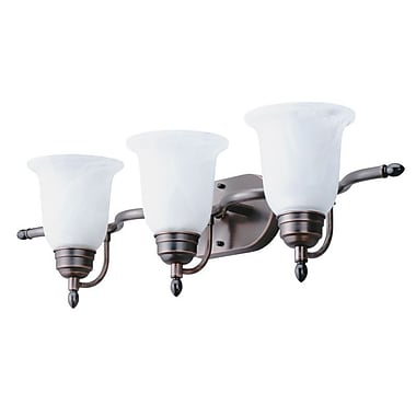Lithonia Lighting Sheffield 3 Light Vanity Light