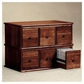 Leslie Dame Apothecary Modular Multimedia Tabletop Storage Rack; Walnut