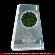Steiner Sports NFL Meadowlands Final Season Logo Crystal