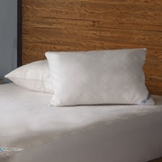 Sealy Posturepedic Maximum Protection Zippered Pillow Encasement; Standard / Queen