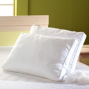 BargooseHomeTextiles Allergy Care Cotton Pillow Cover; King