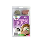 American Educational Products Explore With Me Geology® Sedimentary Rocks