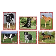 Edupress® 6 x 8 Instructional Accents, Adult and Baby Farm Animals