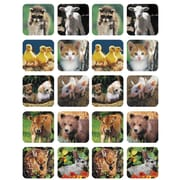 Eureka® Stickers, Baby Animals