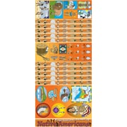 Gallopade All-in-One Bulletin Board Set, Native Americans