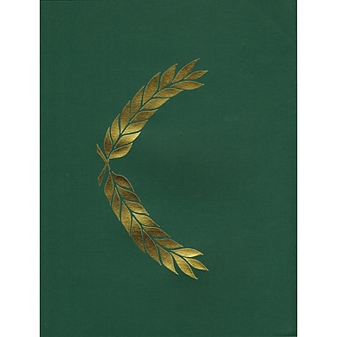Hayes® Embossed Presentation Folder, Green