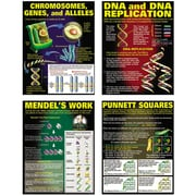 McDonald Publishing DNA and Heredity Poster Set, Science