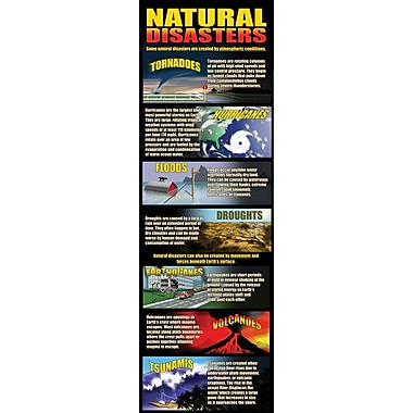 McDonald Publishing Natural Disasters Colossal Poster, Science
