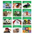 Newmark Learning Rising Readers 12 Titles Science Volume 1 Single Copy Book Set