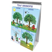 New Path Learning® Weather & Sky Curriculum Mastery® Flip Chart Set