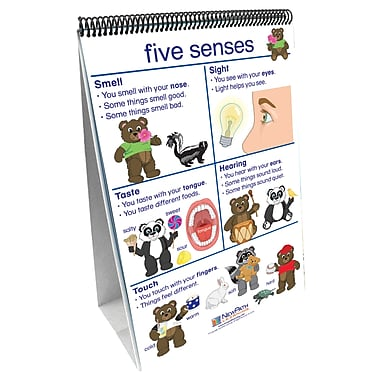 New Path Learning® All About Me Curriculum Mastery® Flip Chart Set