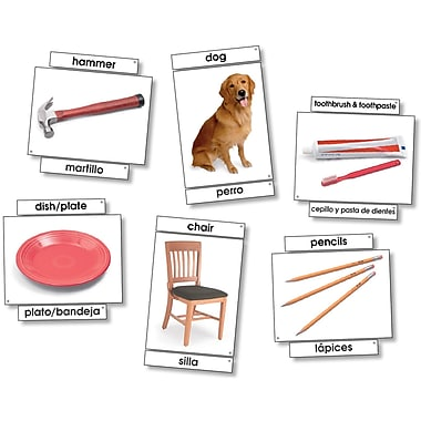 North Star Teacher Resources 6in. x 8in. Basic Vocabulary Skills Language Card