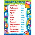 Trend Enterprises® Months of the Year Owl Stars Learning Chart, Classroom Management