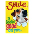 Trend Enterprises® ARGUS® 13 3/8in. x 19in. in.Smile It Looks Good On Youin. Poster