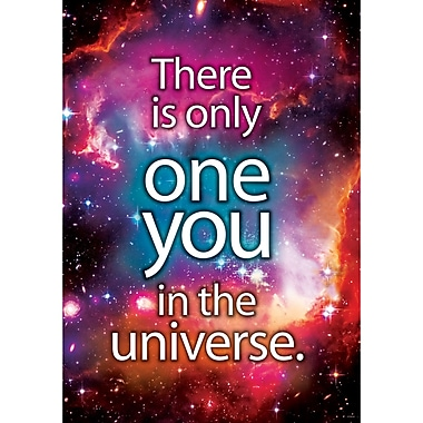 Trend Enterprises® ARGUS® 13 3/8in. x 19in. in.There Is Only One You In The Universein. Poster