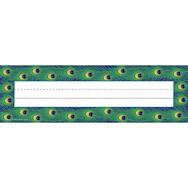 Teacher Created Resources Toddler - 6 Grade Flat Name Plate, Peacock