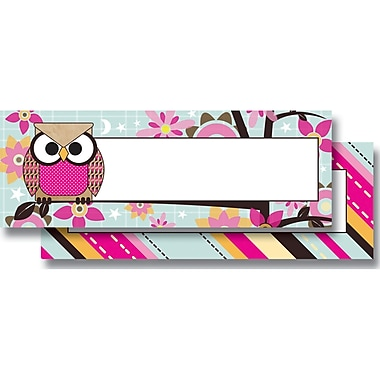 Top Notch Teacher Products® Infant - 6 Grade Mini Name Plate, Paper Bag Owls Stitch Stripes