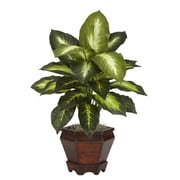 Nearly Natural Dieffenbachia Silk Desk Top Plant in Pot (Set of 2)