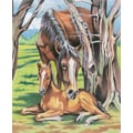 Reeves Colored Pencil By Numbers Intermediate Medium Horse and Foal Colored Pencil